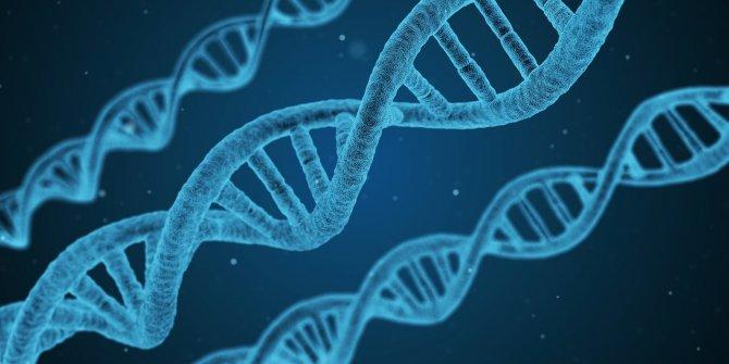 Korona virüsü ağır geçirmenin tek nedeni belli oldu. Genetik şifresi çözüldü. Bilim insanları duyurdu