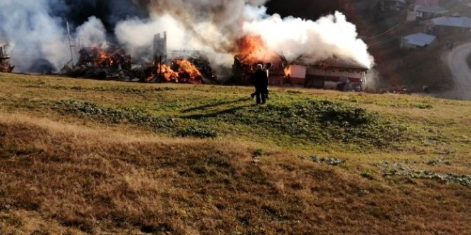 Yaylada korkutan yangın, 4 ev kullanılamaz hale geldi