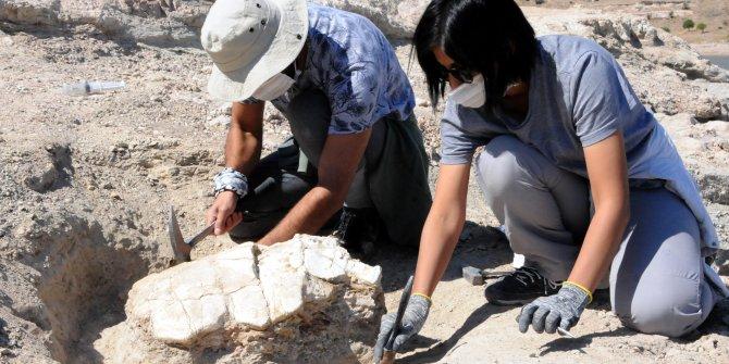 Kayseri'de gün yüzüne çıkarıldı. Tam 7,5 milyon yıl öncesine ait