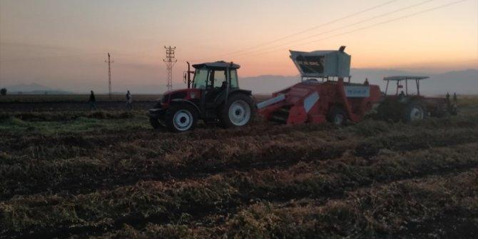Gaziantep'te feci olay. Fıstık hasadında can verdi