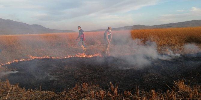 Kuş cenneti Cil Gölü'nde yangın