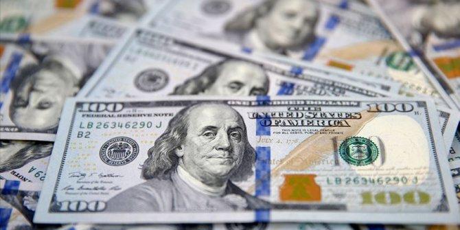 Merkez Bankası dolar rezervi arttı