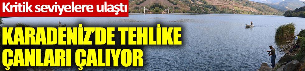 Karadeniz'de tehlike çanları çalıyor. Kritik seviyelere ulaştı