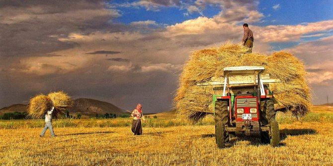 Dolar yükseldikçe çiftçi neden krize girer, marketlerdeki her şeye neden  zam gelir ilkokul çocuğuna anlatır gibi açıkladılar