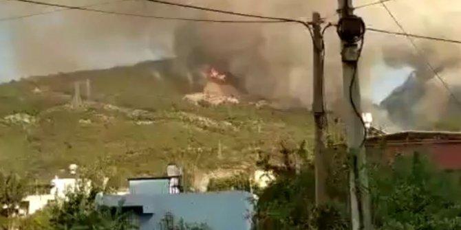 İskenderun'da ormanları yakanları suçüstü kameraya aldı, Yakalayın bu halk düşmanı teröristleri!
