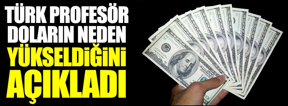 Türk profesör,  'bu doğru değil' diyerek doların neden yükseldiğini açıkladı