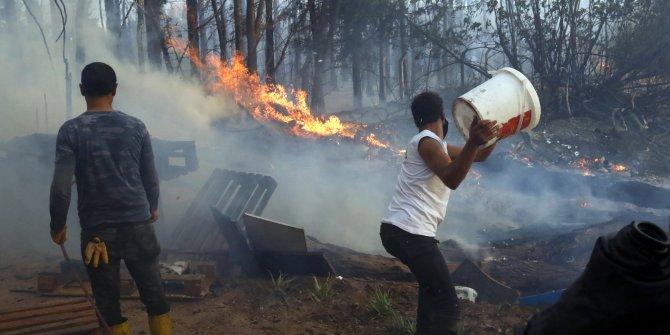 Antalya'daki yangında hepsi kül oldu. Tam 30 yıllıktı