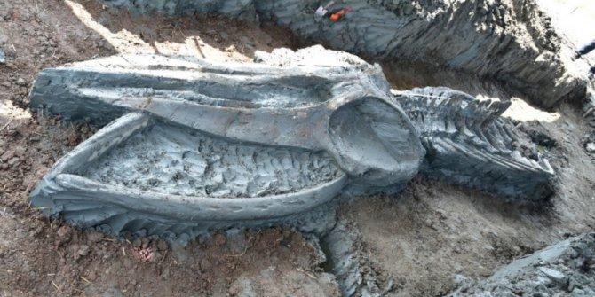Böylesi ilk defa bulundu. 5 bin yıl öncesine ait, sadece kafası 3 buçuk metre