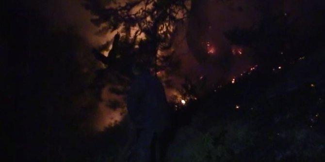 Kastamonu ormanları cayır cayır yandı