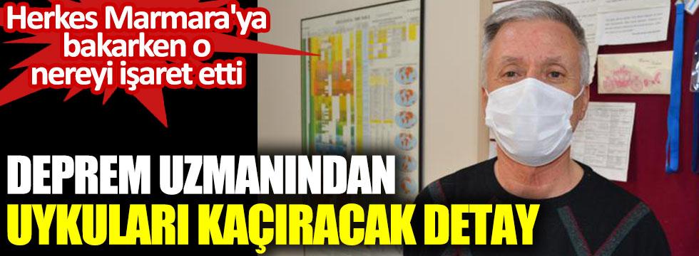 Deprem uzmanından uykuları kaçıracak detay. Herkes Marmara'ya bakarken o nereyi işaret etti?