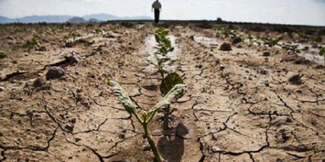 Gelecek yıl için tehlike çanları çalmaya başladı. Dünya Gıda Programı'nda 12 ülke için kıtlık uyarısı