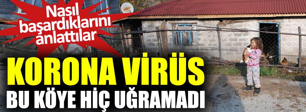 Korona virüs bu köye hiç uğramadı, nasıl başardıklarını anlattılar