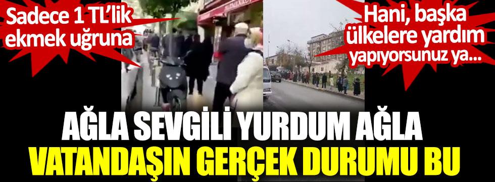 İstanbul'da 1 TL'lik ekmek kuyruğu. Ağla sevgili yurdum ağla, vatandaşın gerçek durumu bu