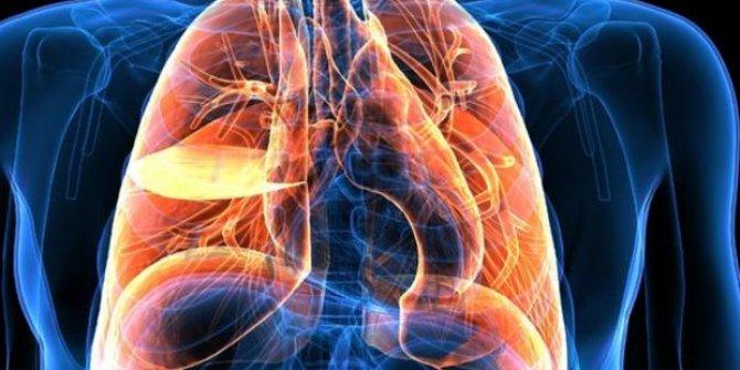 Doç. Dr. Öztürk 1.1 milyar kişiyi bekleyen büyük tehlikeyi açıkladı. Ölüm hızını 14 kat artırıyor