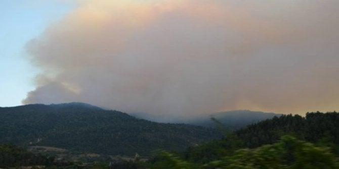 Gürcistan'da esrarengiz orman yangınları