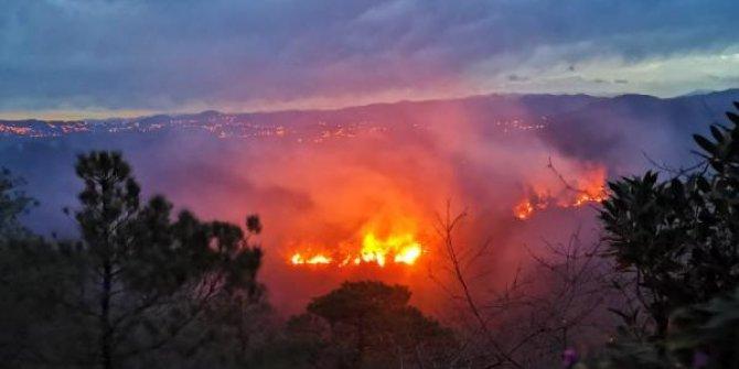 Trabzon'da 2 ilçede orman yangını