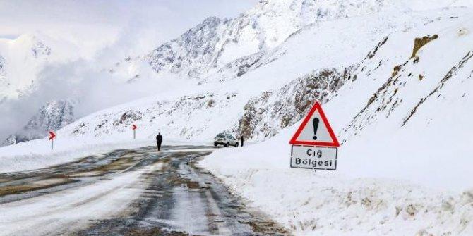 Meteoroloji Doğu Anadolu'daki 4 il için çığ uyarısı yaptı
