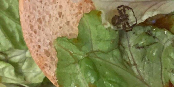 Hamburgerin içinde gördü korkusuyla yüzleşti. İngiliz kadın üç gündür yemek yiyemiyor