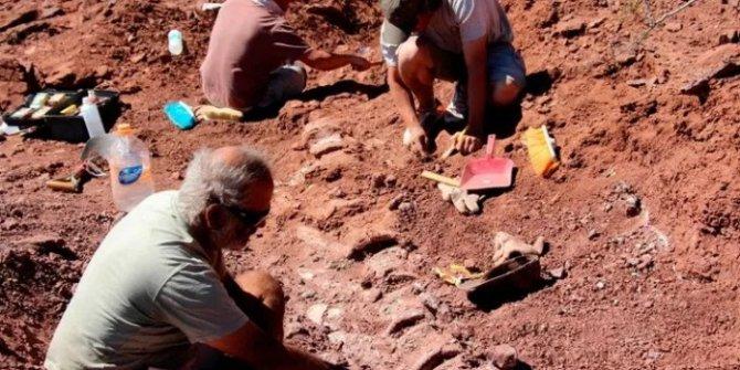 Arjantin'de tarihteki en büyük hayvanın fosili bulundu. Tam tamına 98 milyon yıllık
