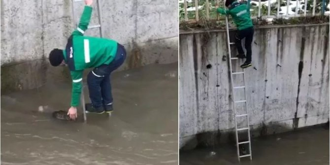 Akaryakıt istasyonu çalışanı suya düşme pahasına pes etmedi!