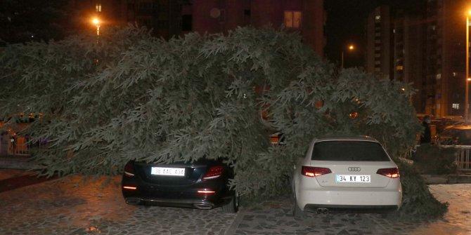Kayseri'de şiddetli rüzgar ağaçları devirdi