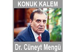 Türkmenler arayış içinde