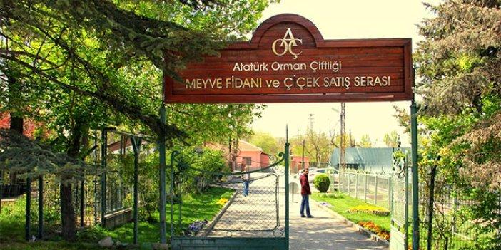 Atatürk Orman Çitliği 90 yıl içinde yüzde 40 küçüldü