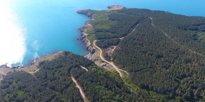 Sinop Belediye Başkanı'ndan nükleer santral açıklaması