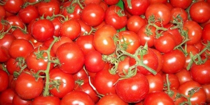 20 ton domates daha iade edildi!