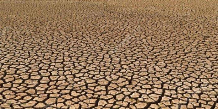 Türkiye'de tarım arazileri boş kalırken hükümet Sudan'dan arazi kiralıyor