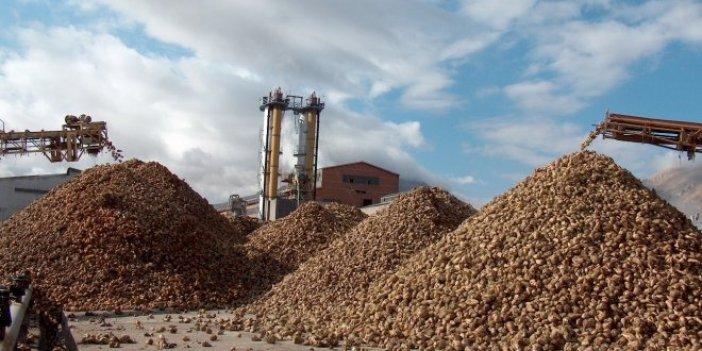 Özelleştirilen şeker fabrikalarından 2 milyar 382 milyon TL zarar edildi