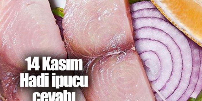 Palamut ve torik gibi balıklardan dilim dilim kesilerek yapılan salamura? Hadi İpucu