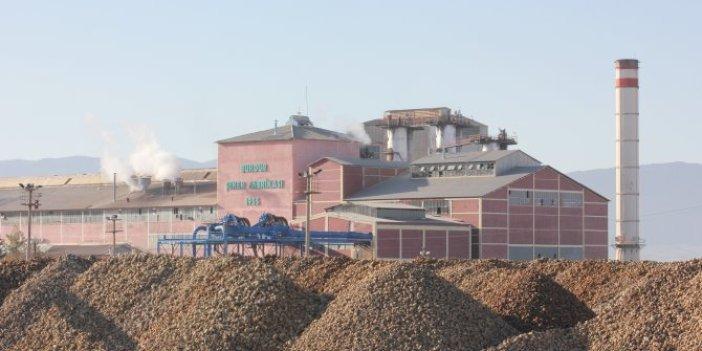 Şeker fabrikası ihalesinde yedek şirket fiyaskosu!