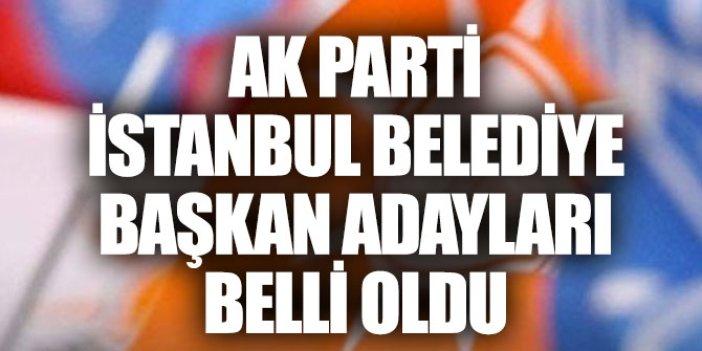 AK Parti İstanbul belediye başkan adayları tam liste
