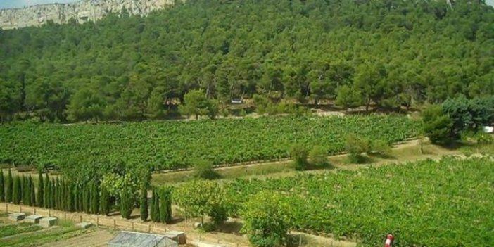 Atatürk Orman Çiftçiliği için yapılan imar değişikliği iptal edildi