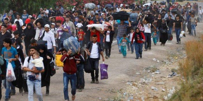 Türkiye'ye gelen sığınmacılar Suriyelilerden ibaret değil!
