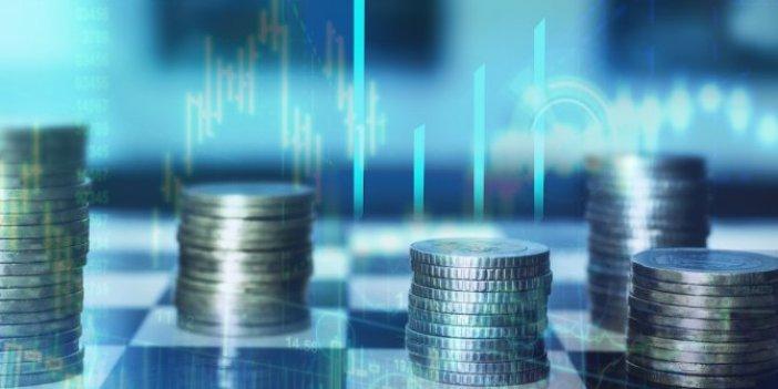Albayrak kredi destek programı açıkladı, uzmanlar uyardı: Bütçe açığı artacak