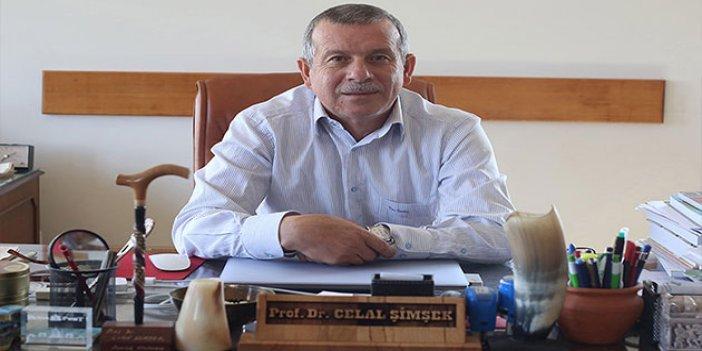 Pamukkale Üniversitesi, 3 kazı çalışmasıyla ilk sırada