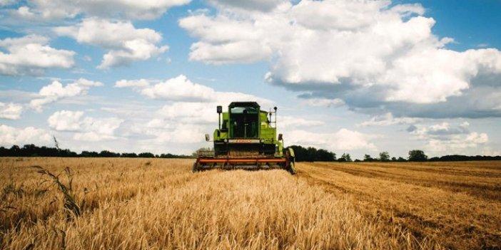 Tarımda üretici fiyatları yüzde 25 arttı