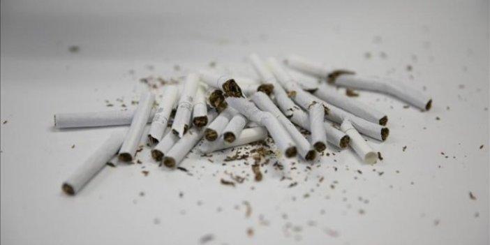 """""""İnternette 'beğeni sevdası' sigarayla mücadeleye zarar veriyor"""""""