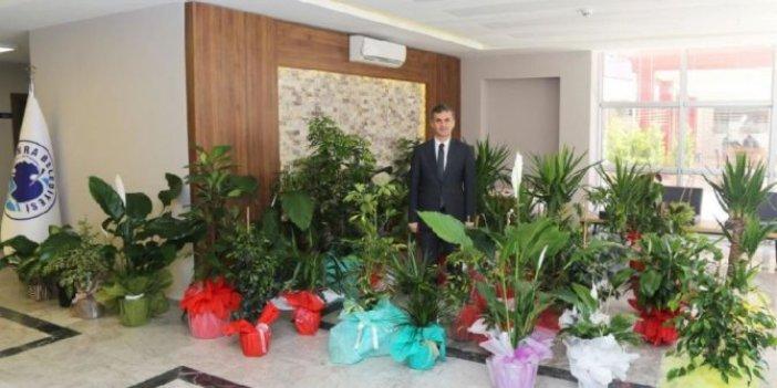 Tebrik çiçeklerini satıp gelirini okula bağışladı