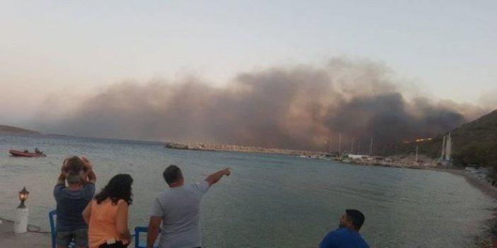 Datça'daki yangında son durum