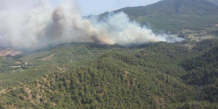 Muğla'daki yangında skandallar zinciri