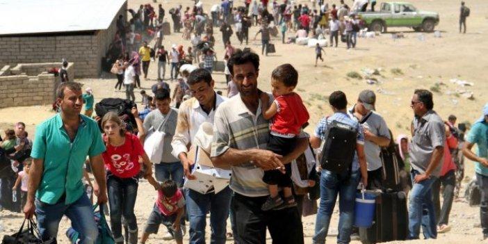 """""""Suriyeliler AKP iktidarını sarsıyor"""""""