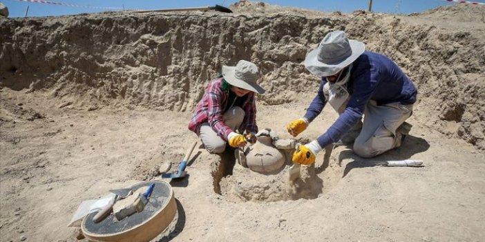 Çavuştepe Kalesi'nde Urartu tarihi ortaya çıkarılıyor