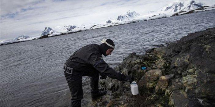 Antarktika kişisel bakım ürünleriyle kirleniyor
