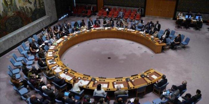BM Güvenlik Konseyi'nden Barış Pınarı açıklaması