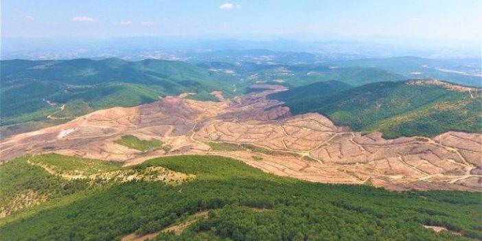 Murat Dağı'nda maden aramaya bilirkişi raporu!