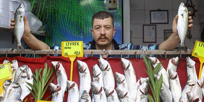 Balık fiyatları ne kadar oldu?