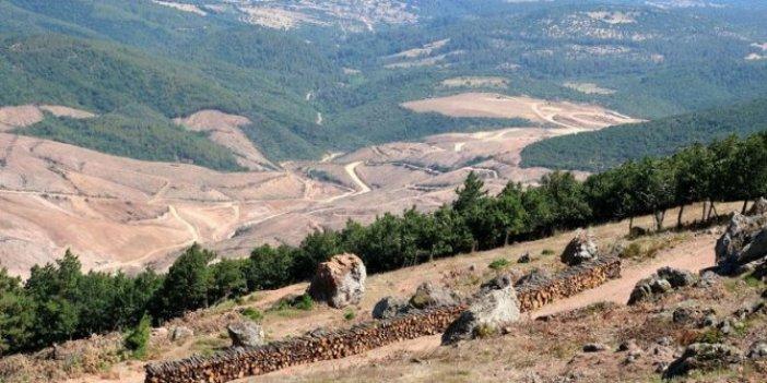 Kaz Dağları'nda 115 maden arama ruhsatı verildi